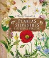 PLANTAS SILVESTRES E INFUSIONE